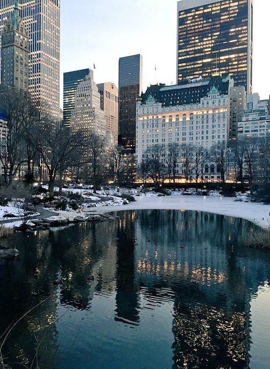 New York Suzanne Neville